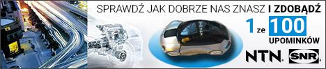 A1 - NTN_SRN Ankieta 01.02-28.02 Kamila