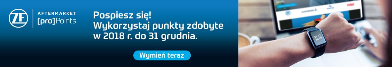 Bilbord Temat Miesiaca zf-propoints 01.12-31.12 Kamila