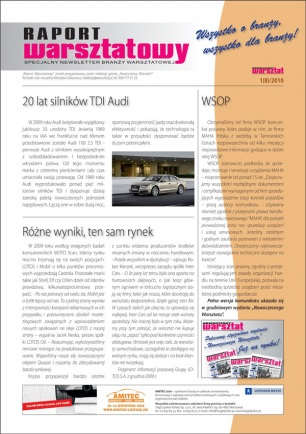 Raport Warsztatowy 1(8)/2010