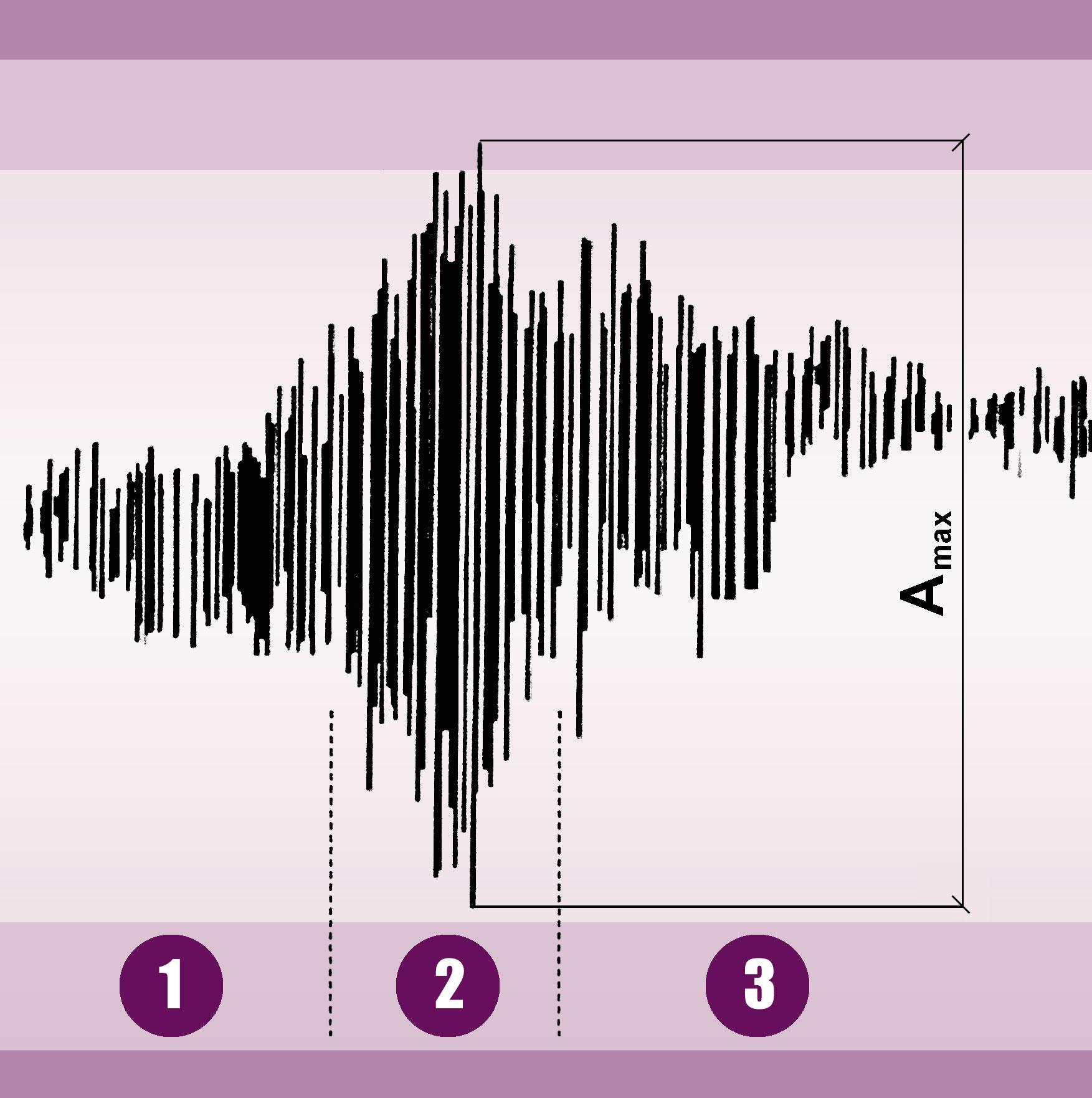 3. Przebieg drgań wymuszonych płyty stanowiska (nadwozia) wfunkcji czasu na stanowisku Shocktester (źródło: Boge/Sachs): 1 – faza rozpędzania, 2 – faza pomiaru, 3 – faza wybiegu